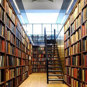 Библиотеки Быкова