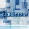Выставки в Быкове