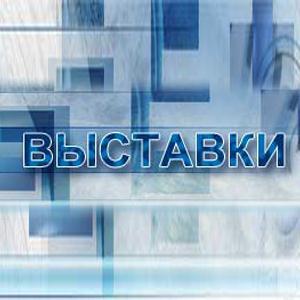 Выставки Быкова